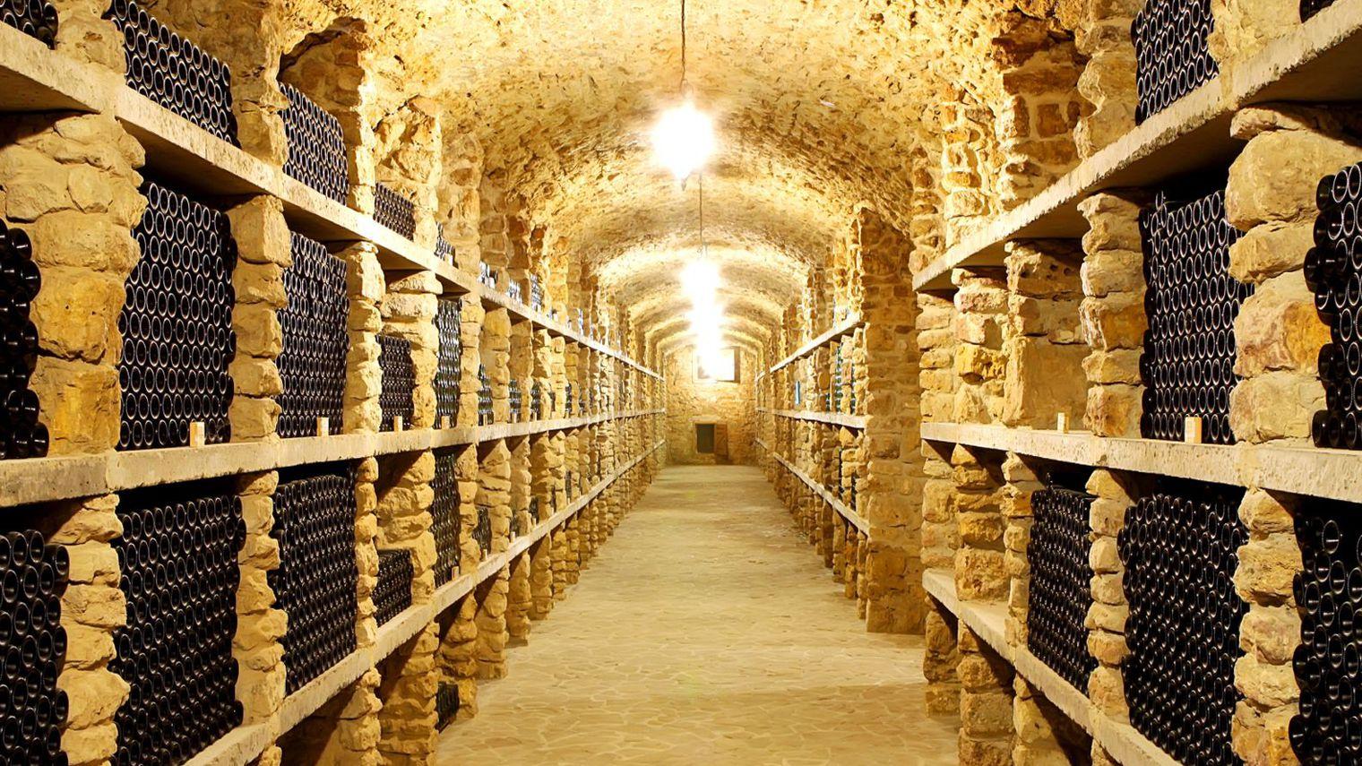 Comparez les caves à vin sur ce site