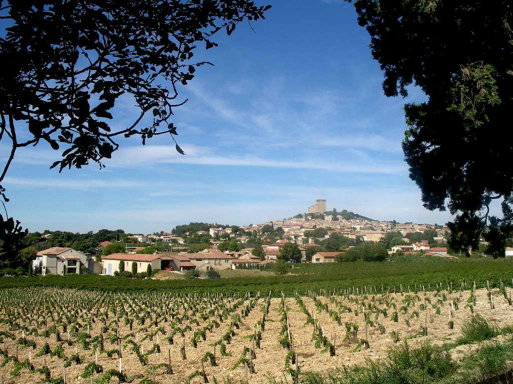 Le vin : une valeur sûre pendant les repas